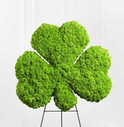 Forever Shamrock Easel from Kinsch Village Florist, flower shop in Palatine, IL