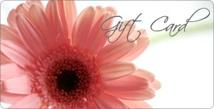 Gift Card from Kinsch Village Florist, flower shop in Palatine, IL