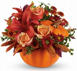Autumn's Joy  from Kinsch Village Florist, flower shop in Palatine, IL