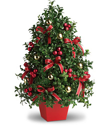 Deck the Halls Tree