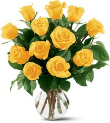 12 Yellow Roses from Kinsch Village Florist, flower shop in Palatine, IL
