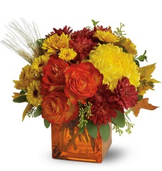 Autumn Expression from Kinsch Village Florist, flower shop in Palatine, IL
